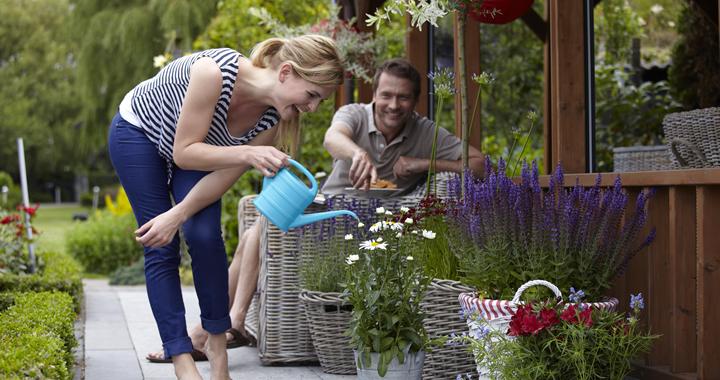 Vaste planten als versierders: hartverwarmend zomergenieten